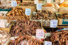 Thai dried seafood Stock Images