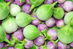 Thai Eggplant background Stock Images