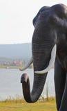 Thai Elephant Statue Royalty Free Stock Photography