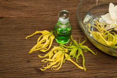 Thai essential massage oil, ylang-ylang flower Royalty Free Stock Image