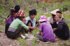 Thai ethnic group of women. Group of Thai women in northern Vietnam. Along the mountain road, they came together to take their lunch. A common dish of rice where Stock Photo