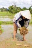 Thai farmer in new agricultural season. Royalty Free Stock Photo