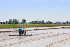 Thai farmer Stock Image