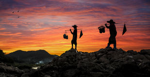 Thai farmer on sunset Royalty Free Stock Images