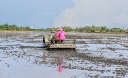 Thai Farmer using tiller tractor in rice field Stock Photo
