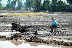Thai Farmer using tiller tractor in rice field Royalty Free Stock Photos