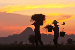 Thai farmers Royalty Free Stock Images
