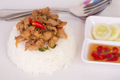 Thai fast food Fried basil leave with chicken on rice Royalty Free Stock Images