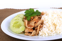 Thai Favorite Dish, Fried sliced pork with garlic with rice and cucumber Royalty Free Stock Image