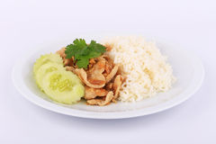 Thai Favorite Dish, Fried sliced pork with garlic with rice and cucumber Stock Images
