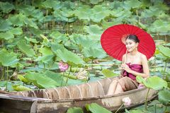 Thai female on a wooden boat collecting lotus flowers. Asian women sitting on wooden boats to collect lotus. Beautiful girl. Thai female on a wooden boat stock photo