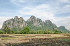 Thai fields Royalty Free Stock Image