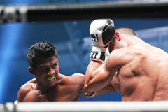 THAI FIGHT 2012 Stock Photography