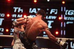 THAI FIGHT 2012, Final Round Royalty Free Stock Photos