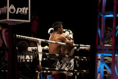 Thai Fight Stock Photography