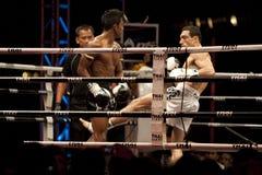 Thai Fight Stock Image