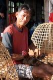 Thai fighting Stock Images