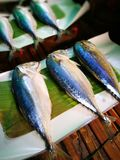Thai fish good quality Royalty Free Stock Images
