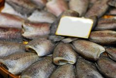 Thai fish in the market. Royalty Free Stock Photos