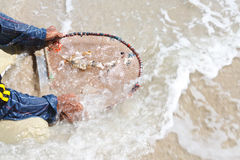 A thai fisherman is searching for shells Stock Photos