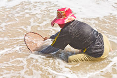 A thai fisherman is searching for shells (Pharella javanica) Royalty Free Stock Photos
