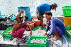 Thai fishermen sorting day capture in Thailand Stock Image