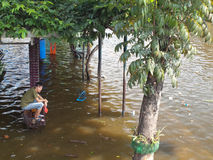 Thai Flood Royalty Free Stock Images