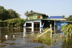 Thai flood01. THAILAND, Pathumtani - OCTOBER 23 -Thai flood hits Bangkok areas, higher water levels expected, here in Ayutthaya district people are severely Royalty Free Stock Image