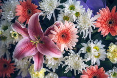 Thai flowers texture background Royalty Free Stock Photography