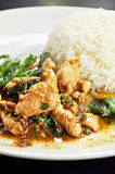 Thai food. Stir fried chicken, chilli and Basil leaf  (Pad Kapraow Stock Images