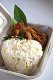 Thai Food in box Royalty Free Stock Images