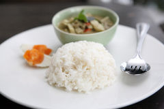 Thai food chicken green curry Royalty Free Stock Images