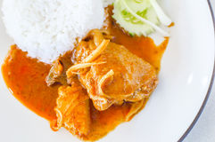 Thai food, Chicken massaman curry with  rice Stock Images