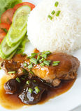 Thai food Chicken stew and Steamed rice. Delicious Thai Dishes, Thai style Chicken stew with Shiitake mushrooms and Steamed rice Stock Image