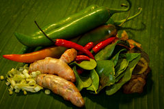 Thai food Cooking ingredients. Front view Royalty Free Stock Photography