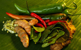 Thai food Cooking ingredients. Side view Stock Images