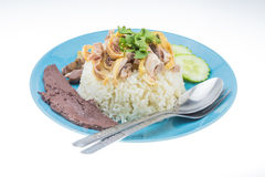 Thai food fast food, Steam Chicken with Rice Stock Images