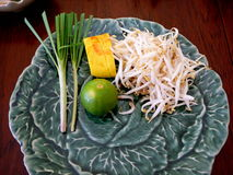 Thai Food. A few ingredients for a plate of Pad Thai.  Scallions, lime, bamboo shoots and Tofu on a beautiful dish Stock Photos