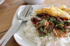 Thai food. Fried basil leave with pork on rice Royalty Free Stock Image