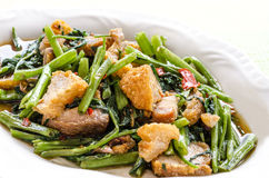 Thai Food Fried Morning Glory with Crispy Pork and rice. Stock Photo