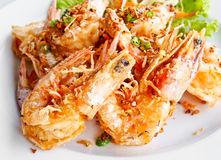 Thai food, fried prawns with garlic 3 Royalty Free Stock Photography