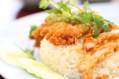 Thai food gourmet fried chicken with rice Royalty Free Stock Photography