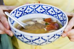 Thai Food - Hot and Sour Chicken Soup Royalty Free Stock Photo