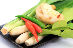 Thai food ingredient for Tom yum Royalty Free Stock Image