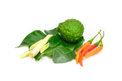 Thai food ingredient for Tom yum kung. Isolated in white Stock Photos