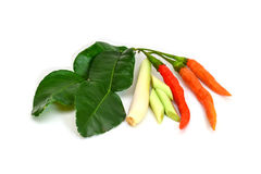 Thai food ingredient for Tom yum kung. Isolated in white Royalty Free Stock Image