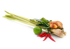 Thai food ingredient for Tom yum. On white background Stock Photography