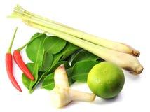 Thai food ingredients Royalty Free Stock Photo