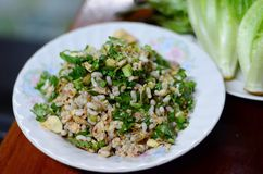 Thai food is made from red ant egg spicy,selective focus at red ant egg spicy with blur foreground and background Royalty Free Stock Image