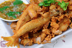 Thai food name is Deep fried Silver banded fish with garlic pepp Royalty Free Stock Images